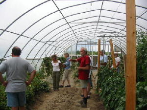 greenhouse tour